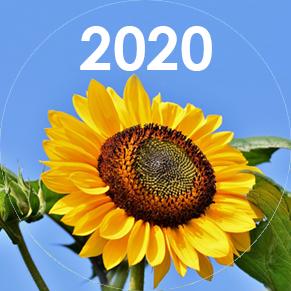 Знаки Судьбы 2020